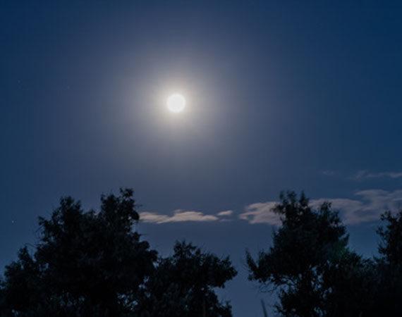 Laurencja by night – piątek 23.06.2017