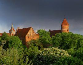 Wystawa: Olsztyńskie muzealia w Polsce i na świecie